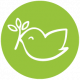 Web icons green Dove web